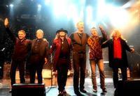 The Long Run Eagles Tribute in Orlando