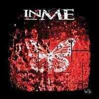 INME in Ireland