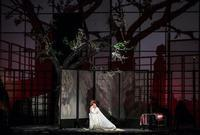 Madama Butterfly in Hungary