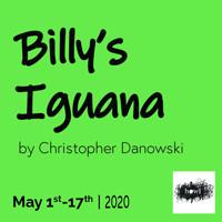 Billy's Iguana in Phoenix