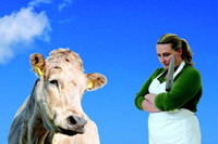 CHAROLAIS BY NONI STAPLETON – Presented by The Everyman in Ireland
