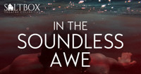In the Soundless Awe in Chicago