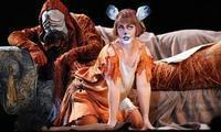 The Cunning Little Vixen in Prague
