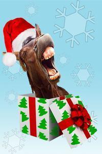 Horse Head Holiday Huzzah! in Dallas