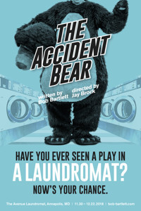 The Accident Bear in Washington, DC