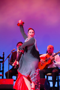 EXPLOSIVE FLAMENCO DIRECT FROM SPAIN: HERENCIA FLAMENCA in Broadway