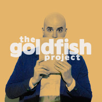 The Goldfish Project in Chicago