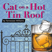 Cat on a Hot Tin Roof in Central New York