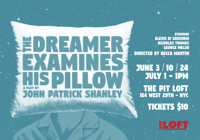 The Dreamer Examines His Pillow in Rockland / Westchester