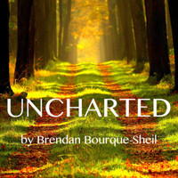 UNCHARTED, by Brendan Bourque-Sheil in Houston