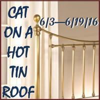 Cat on a Hot Tin Roof in Philadelphia