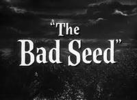 Bad Seed in Broadway
