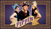 Pippin in San Francisco