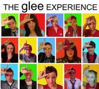 The Glee Experience in Ireland