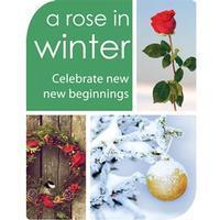 A Rose in Winter in Broadway