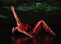 Kun-Yang Lin/Dancers in Broadway