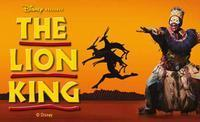 The Lion King in Ireland