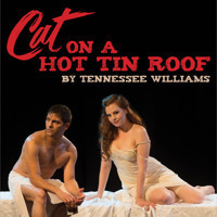 Cat On A Hot Tin Roof in Connecticut