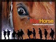 War Horse in San Francisco