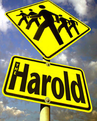 The Harold in Seattle