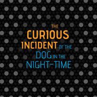 The Curious Incident of the Dog in the Night-Time in Dallas