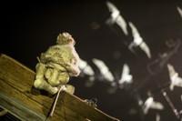 Boom Arts presents Silencio Blanco's Pescador (Chile) in Portland