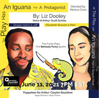 This Play Has An Iguana for a Protagonist by Liz Dooley in Washington, DC