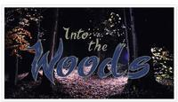 Into the Woods in St. Paul