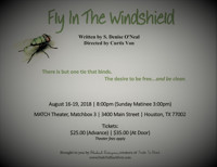 Fly In The Windshield in Houston