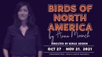 Birds of North America in Washington, DC