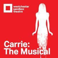 Carrie in Rockland / Westchester