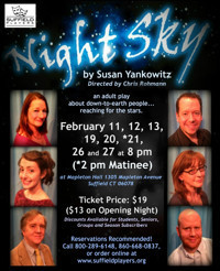 Night Sky by Susan Yankowitz in Connecticut