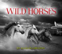 Wild Horses in Broadway