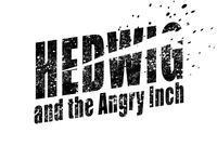 HEDWIG and the ANGRY INCH in Birmingham