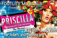 Priscilla, Queen of the Desert the Musical in Indianapolis
