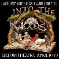 Into the Woods in Other New York Stages