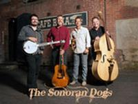 Sonoran Dogs in Tucson