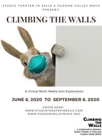 Climbing the Walls - A Virtual Mult-Media Exhibition in Rockland / Westchester