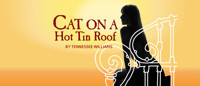 Cat on a Hot Tin Roof in Baltimore