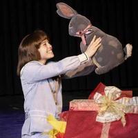 The Velveteen Rabbit in Phoenix