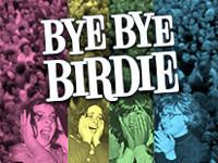 Bye Bye Birdie in Connecticut