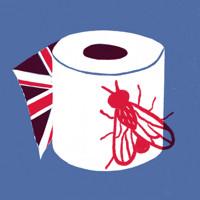 Coronavirus ? A Great British Farce in UK Regional