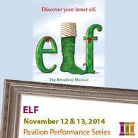 Elf in Sioux Falls
