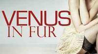 Venus In Fur in Broadway