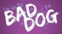 Bad Dog in Orlando