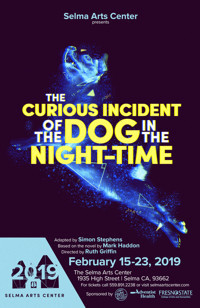 The Curious Incident of the Dog in the Night-Time in San Francisco