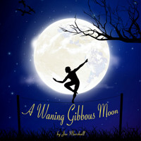 A Waning Gibbous Moon in Off-Off-Broadway