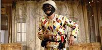 Harlequin and the magic of the theatre in Italy