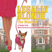 Legally Blonde: The Musical in Atlanta