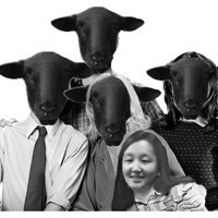 Black Sheep in Broadway